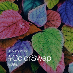 dailyinspirations colorswap