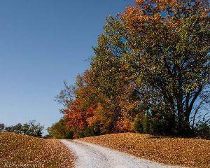 landscape colorful photooftheday photo photography