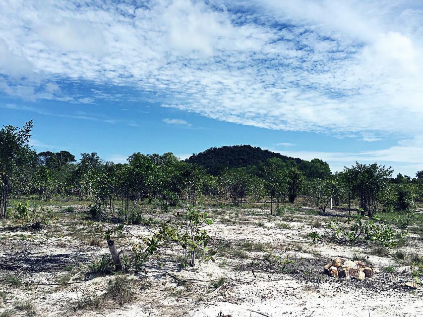 #nature #cambodia #kohrong
