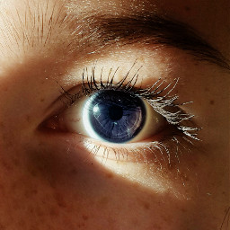 eye colorful people photography