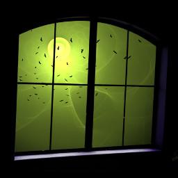 viewfrommywindow surreal window birds wapautumnvibes