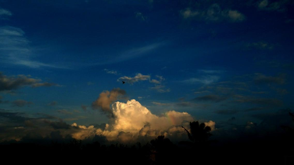 #sky #starrysky