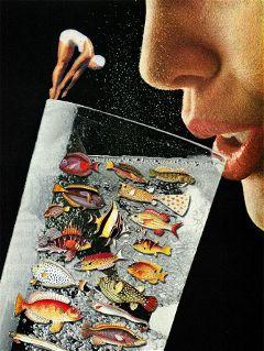collage vintage retro collageart