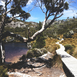 drama tasmania australia travel