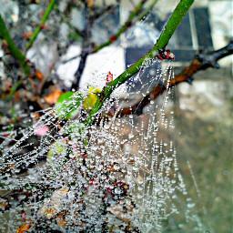colorsplash colorful emotions photography rain