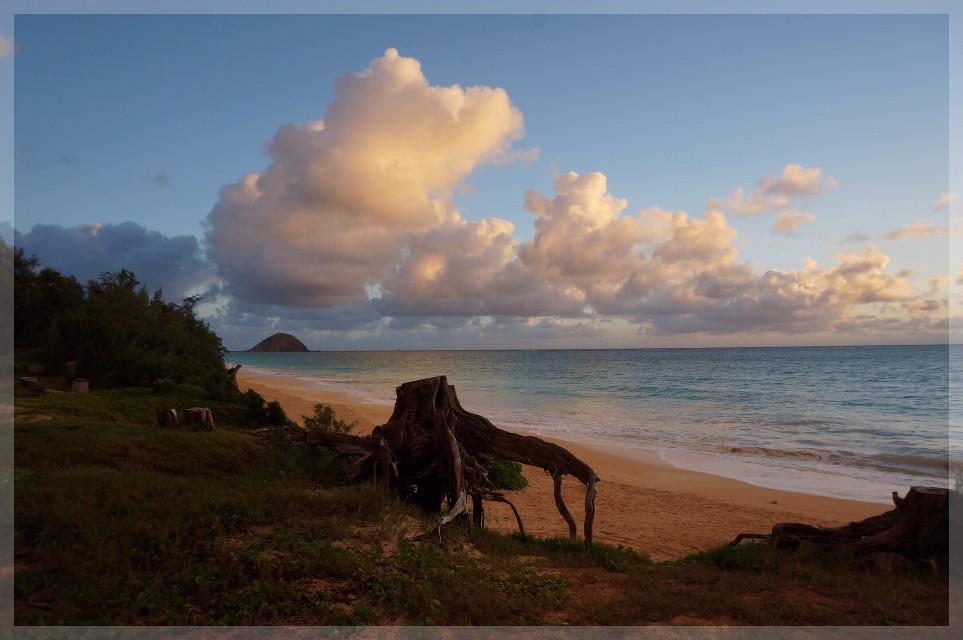 #beach #sunrise #myhappyplace #