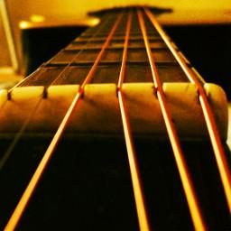 guitar stringinstrument strings close oldphoto