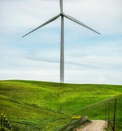 windturbine green farm