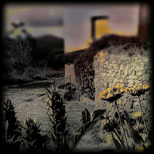 #freetoedit #hdr #nature #oldphoto #flower #spring #vintage #borja #street