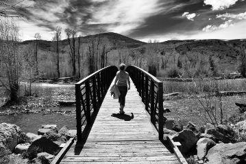 blackandwhite landscape nature bridge grove freetoedit