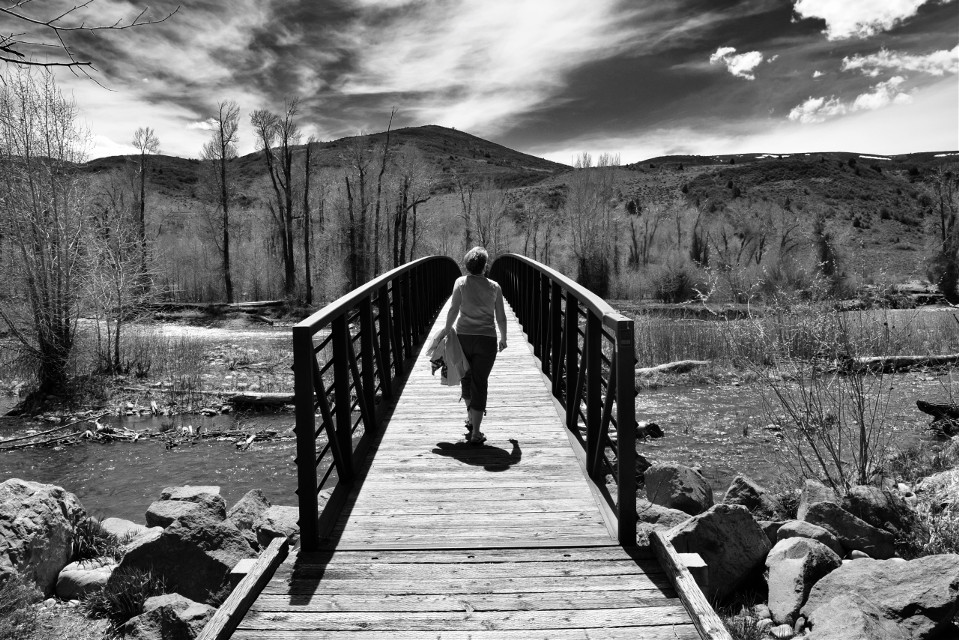 Into the Grove #blackandwhite#landscape#nature#bridge#grove#freetoedit